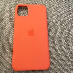 iPhone 11 Pro Max apple case